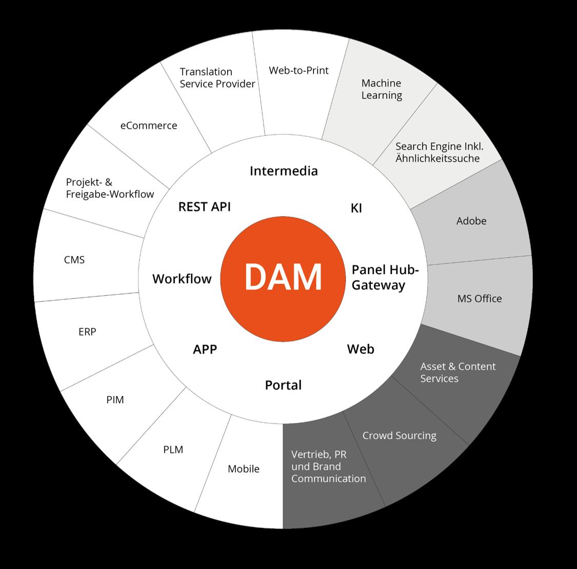 DAM-Infobild